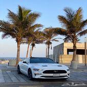 فورد موستينق ( تم البيع تم البيع ) GT 2019