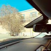 سلفرادو 2015 للبيع