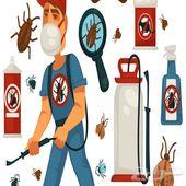 رش مبيدات شركة رش مبيدات صراصير نمل فئران وزغ