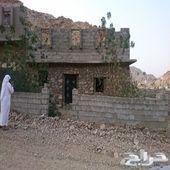 للبيع بيت في الحسينية في حارة الشنابرة مكون م