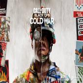 Call of Duty Cold War Pc سعر حصري
