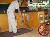 شركة رش مبيدات شركة مكافحة حشرات بالرياض