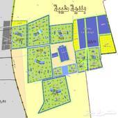 للبيع قطعة أرض في طيبة الفرعية حي الوداد 597