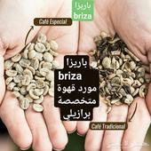 قهوة مختصة جملة