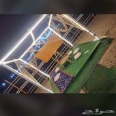 مخيم وصال 3 جدة هدى الشام