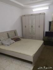 شقة مفروشة غرفتين للاجار ملحق