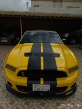SHELBY for sale