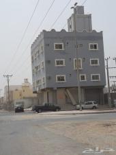عماره موقع تجاري