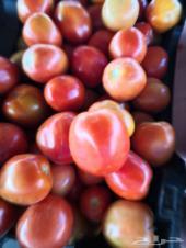 طماط طازج