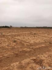 مزرعة للايجار السنوي في موقع مميز في محافظة ض