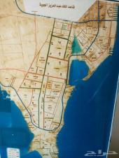 للبيع ارض بمخطط 209 حرف أ شارع 40 فرصه