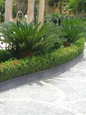 فن الحدائق الجميله  والعشب الصناعى