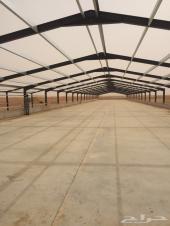 انشاء وبناء مزارع الدواجن 0551112214