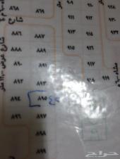 ارض بصك مخطط ابيار الماشي