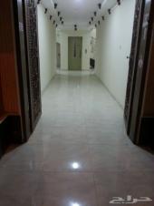 شقة غرفة عزاب وصالة في حي الخليج