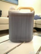 (مزاد) عسل السدر الجبلي 7 كيلو صافي