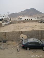 ارض للبيع بحي المحاميد خلف محطه ال فالح