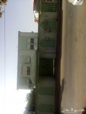 عماره دورين حي الفيصليه