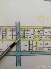 للبيع ارض بعين السيح 2217 م شارع 60 غرب 20 جن