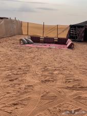 مخيم الوليد متاح الجمعه ب199