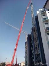 Qassim Cranes to rent all equipment