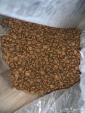 طعام قطط جاف نوعSchesir بسعر منافس
