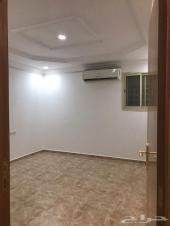 شقة عزاب للايجار - الرياض