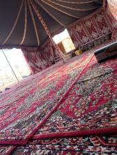 مخيمات الوليد للإيجار اليومي والشهري