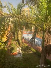 فيلا راقية في كمبوند للإيجار بحي الشاطىء