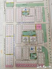 للبيع الأرض رقم 111 مخطط 168 شمال العدل