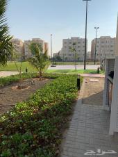 شقة للبيع في مدينة الملك عبدالله الاقتصادية