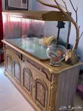 حوض سمك كبير جيبو