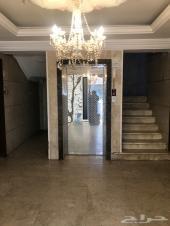 شقة للإيجار حي الفيصلية