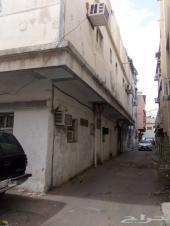 شقه عزاب للإيجار في حي العقيق
