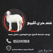 طليان حري ذبائح الحرازات وب اسعار طيبه