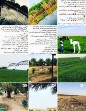 مزرعه متوفرة الماء بصك شرعي للبيع