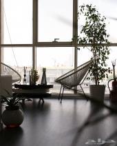 مكتب بديكور راقي للتقبيل - مخرج 6