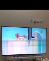 شاشة تلفزيون سوني