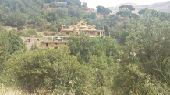 قصر أنتيك كلاسيك اثري عالمي للبيع جبل لبنان