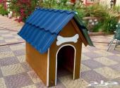 بيت كلاب