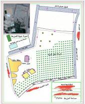 مساح لتقسيم الأراضي وحصر كميات ورفع وتوقيع نق