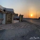 شارعين للبيع على شارع الملك سعود ابحر