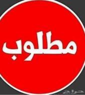 سايق خاص من السودان