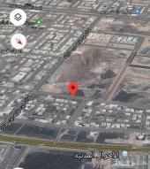 للبيع ارض تجاريه شارع 40 مخطط الملك فهد