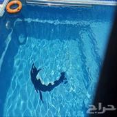 شاليه ريفان في الاجاويد