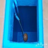 شركه عزل خزانات تنظيف شقق بجدة السعر 300ريال