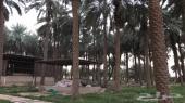 مزرعه في المحمدي بمحافظة الدلم