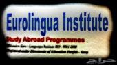 معهد اللغة الاوروبية في الهند - مدينة غوا GOA