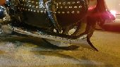 دباب هارلي هرتج سوفتيل 2012