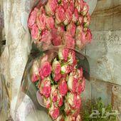 ورود جديدة سعر الجملة زهور بالرياض